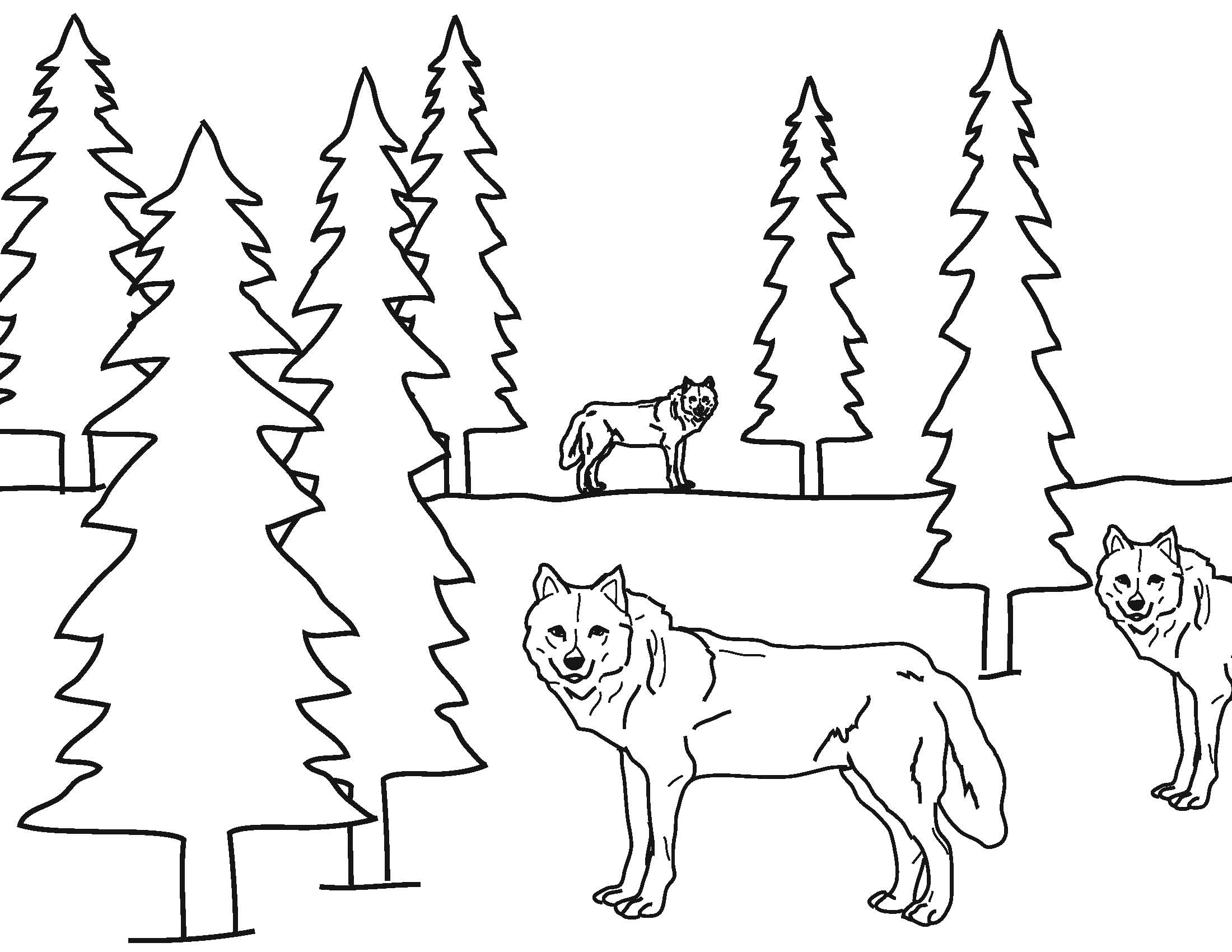 yellowstone coloring pages - photo#31